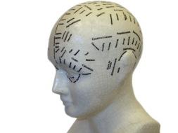 HeadModel